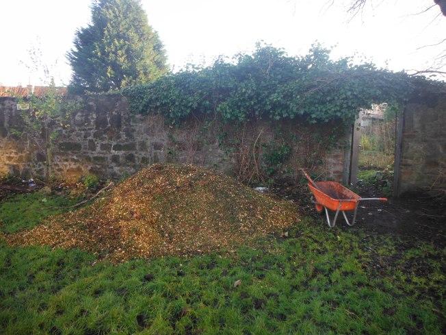 woodchip pile
